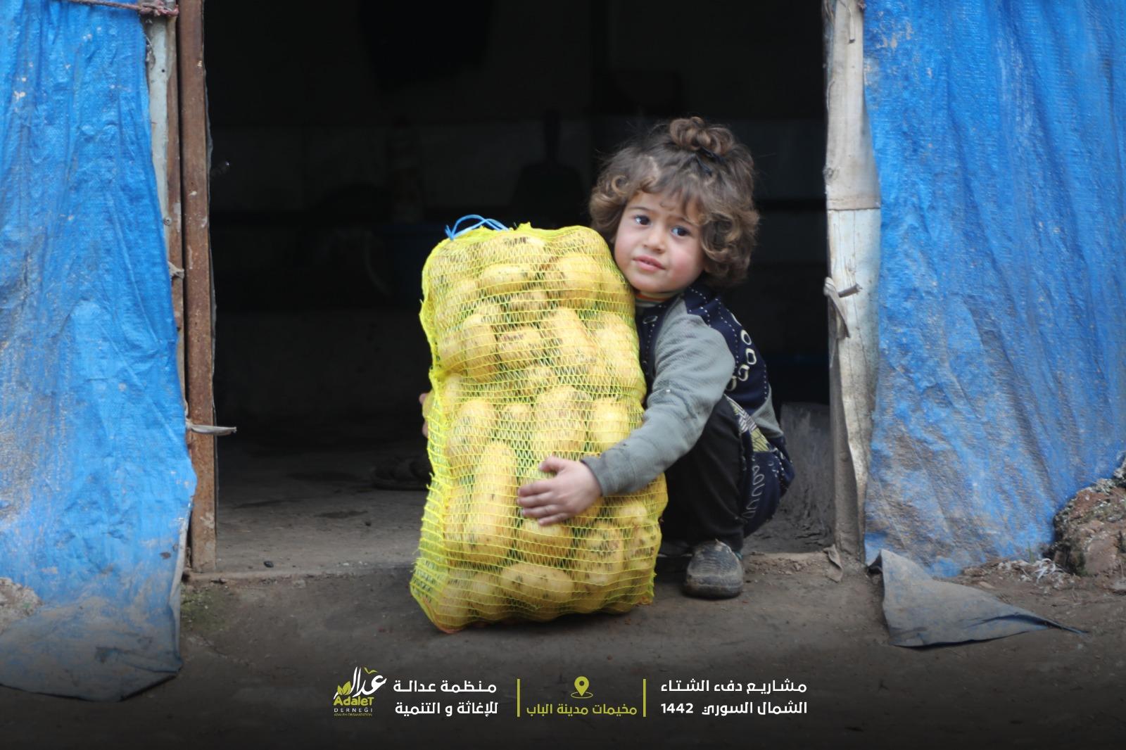 توزيع المواد الغذائية